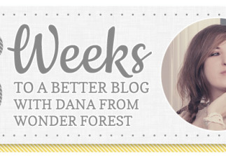 6 Weeks to a Better Blog: Shooting a DIY Project