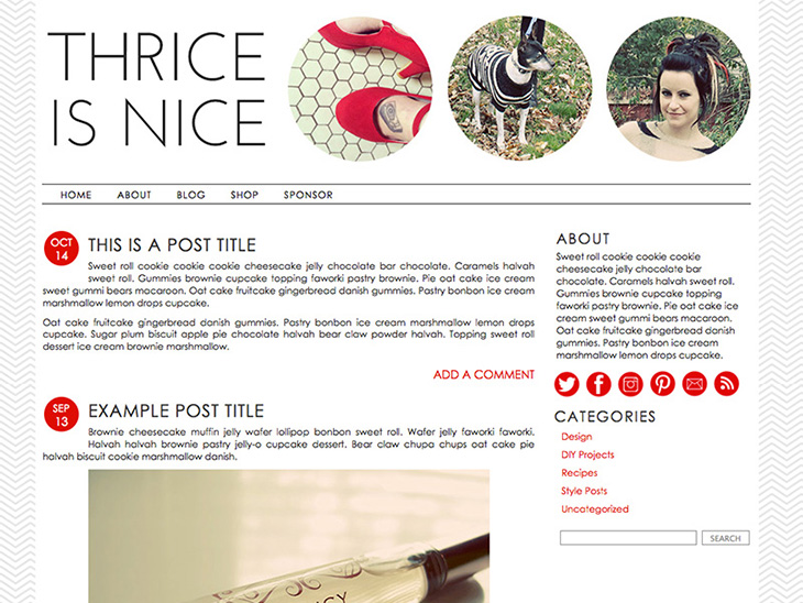 Premade templates for blogger and wordpress
